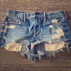 HCO Shorts